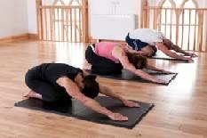 Healthybodies Training